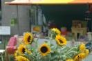 Fair 2009_1